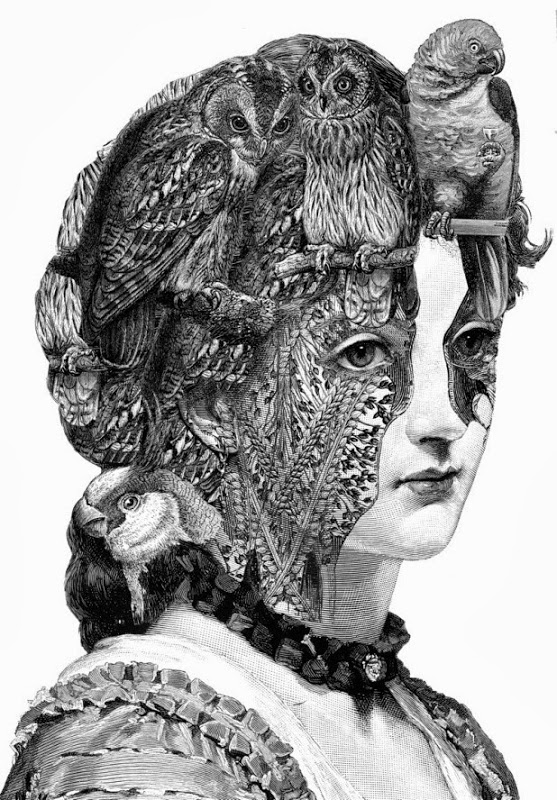 Engravings and Collages by Paula Braconnot: paula braconnot 3[3].jpg